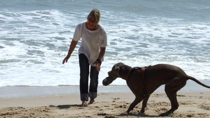 Urlaub mit dem Hund auf Spiekeroog